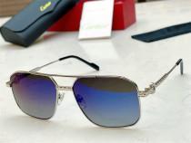Cartier Sunglasses CT0615S Sunglasses CR181