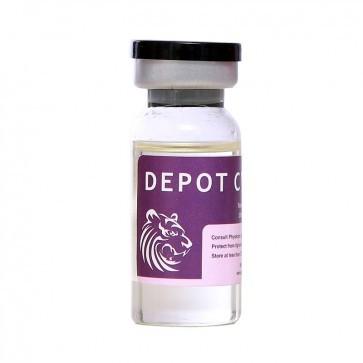 DEPOT CYP 250(TC 250,Delatestryl, Tesamone)