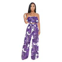 Violet Two piece set of wide leg pants wrapped in chest and waist