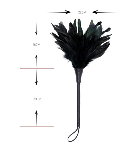 Black feather with rod