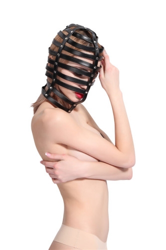 Striped leather restraint all-inclusive hood