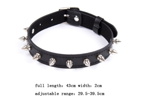 Spiked dog slave collar