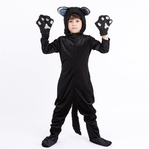 Boy's cat costume