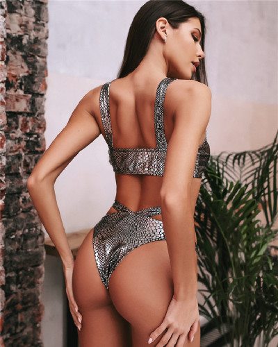 Silver Bronze fabric swimsuit