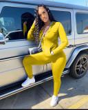 Yellow Casual Turndown Collar Zipper Design Two Piece Pants Set