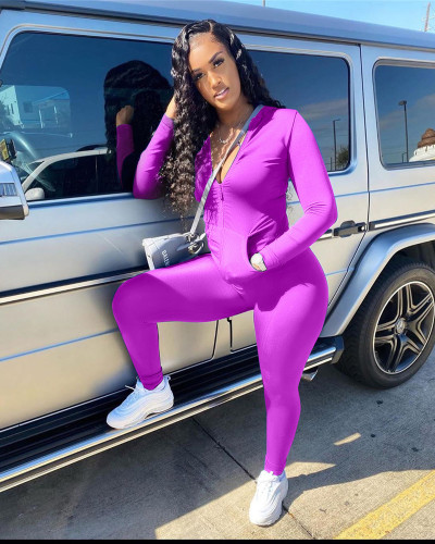 Violet Casual Turndown Collar Zipper Design Two Piece Pants Set