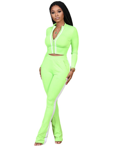 Green Two-piece sports suit with zipper sweater and tights