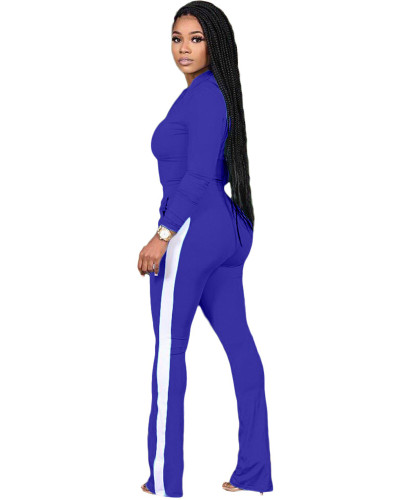Bule Two-piece sports suit with zipper sweater and tights
