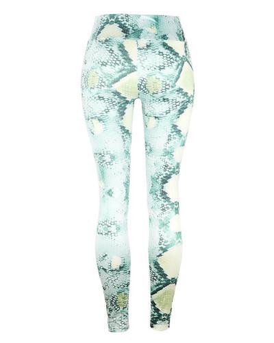 Green Slim fit Snake Print Yoga Pants Leggings