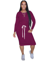 Purple Classic simple casual solid color long sleeve dress