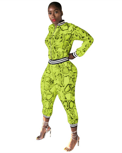 Yellow Snakeskin printed leisure sports two-piece suit