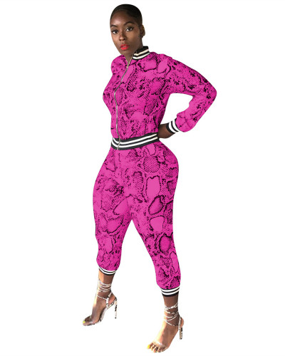 Rose Red Snakeskin printed leisure sports two-piece suit
