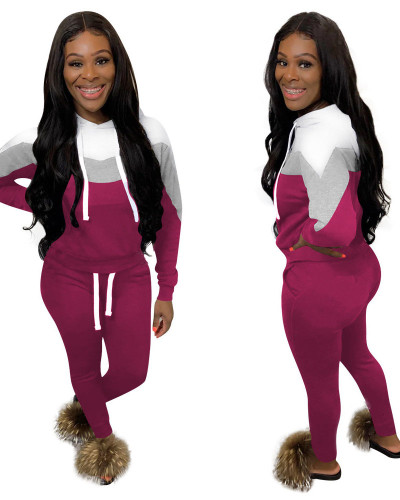 Purple Two piece set of fashion and leisure sports splicing and thickening