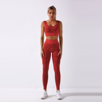 Red Moisture wicking fitness bra high waist sports trousers snake pattern seamless yoga fitness suit
