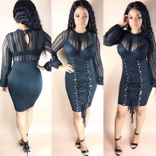 Black Long sleeve mesh corns dress