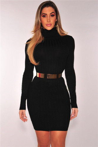 Black Sexy fashion autumn and winter high collar dress