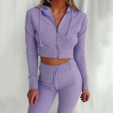Violet Hooded Long Sleeve Slim Fit Sports Casual Suit