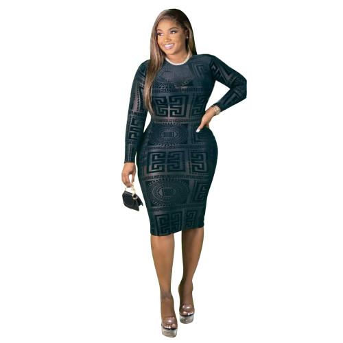 Black Stretch mesh print see-through sexy slim dress