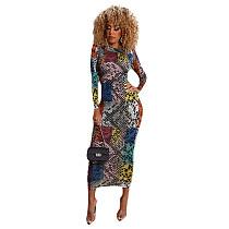 Stylish Print Full Sleeves Skinny Ankle-length Maxi Dress WSM-5109