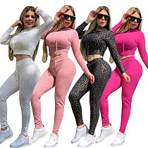2020 Casual Long Sleeves Hoodies And Bodycon Pants 2 Pieces Outfits CY-2140