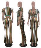 Fashion Short Sleeve Vertical Print Deep V Tie Blouse and Trousers Two-piece Set MLS-8012