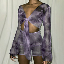 Autumn Long Sleeve Crop Top Perspective Mesh Skirt Set BLG-082866