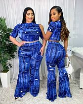 Fashion Print Short Sleeve Crop Top Flared Trousers 2 Piece Set WXY-8834