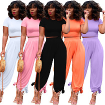 2021 Summer Hot Plus Size Solid Short Sleeve O Neck Crop Tops Wide Leg Pants Women Casual Two Piece Set BLX-8214