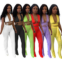 Sexy Solid Deep V Neck Halter Bandage Backless Crop Top Flare Pants Women Clubwear 2 Piece Matching Set XUH-5048