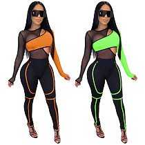 Women's Tracksuits Full Sleeve Mesh Patchwork Hollow Out Bodysuits Skinny Pants Night Club Two Piece Suit WPH-6078