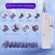 Nano Mesotherapy Microneedle Pen Hydra Injector Derma Pen 2 in 1  Mesogun Portable Smart Injector Pen Facial Treatment Machine