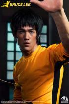 【Preorder】INFINITY Studio Bruce Lee Bust Silica Gel Resin Statue's postcard