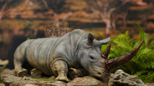 【Preorder】JacksMake Animal Protection Act Series Rhinoceros Resin Statue's Postcard