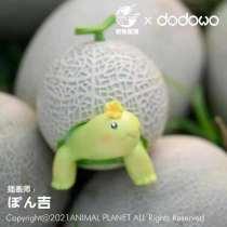 【Preorder】Animal Planet x Dodowo Cantaloupe turtle Resin Statue
