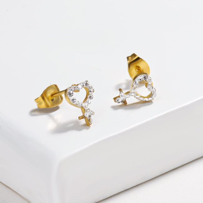 Crystal paved Stainless Steel Earrings -SSEGG143-14810-G