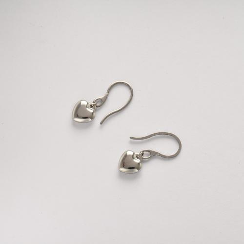Stainless Steel Jewelry,Earrings—SSEGG142-34471