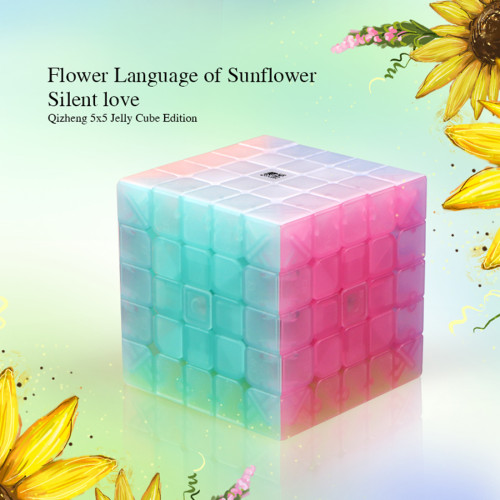 Qiyi Qizheng S 5x5 Magic Cube Educational Toys for Brain Trainning - Jelly Color
