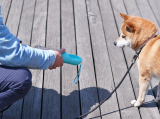Pet dogs accompanying water cups to go out supplies outdoor drinking water feeding water dispenser portable kettle water bottle