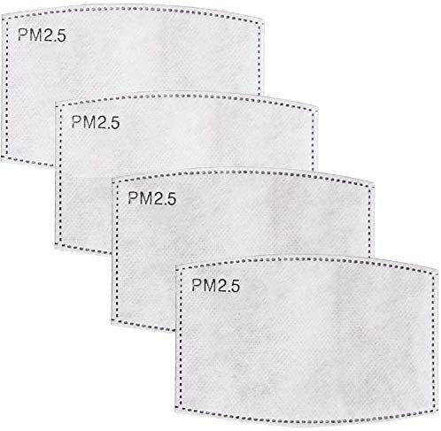 PM2.5 activated carbon filter (adults or kids) 5 layers of replaceable anti-fog filter paper