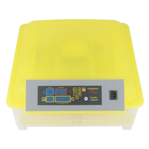 Egg Practical Fully Automatic Poultry Incubator (US Standard) Yellow & Transparent