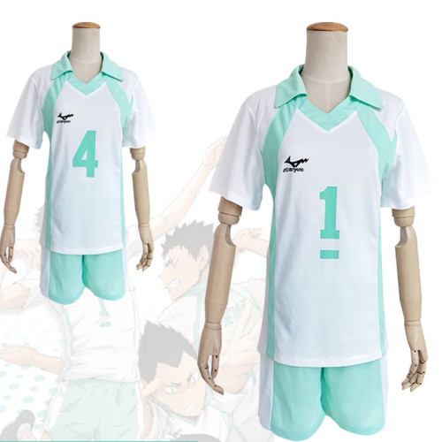 Anime Haikyuu!! Aoba Johsai Costume Volleyball Team Cosplay Uniform Unisex Halloween Party Costume