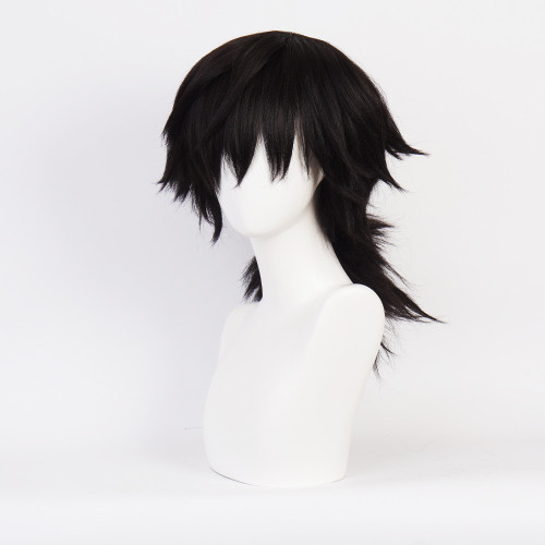 Anime Demon Slayer Giyu Tomioka Cosplay Accessories Cosplay Wigs