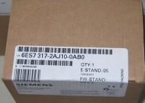 Siemens CPU317-2DP,6ES7 317-2AJ10-0AB0,6ES7317-2AJ10-0AB0