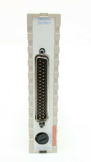WESTINGHOUSE 1C31125G02 Digital Module