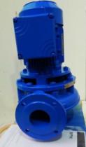 Johnson Pumpe SPX CL65-160 0,75 KW Horizontal Centrifugal Pump