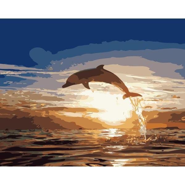 DIY Painting By Numbers - Dolphin  (16 x20  / 40x50cm)