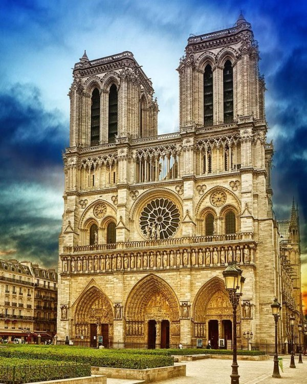 DIY Painting By Numbers -Cathedral Notre Dame Paris (16 x20  / 40x50cm)