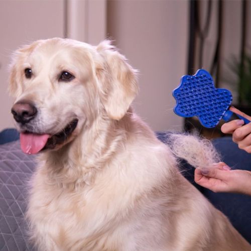 Groom Glider The grooming de-shedding and bathing pet brush