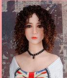 樱子156cm H-cupリアルドールOR Doll#002-26