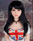Tania 156cm H-cupセクシーダッチワイフOR Doll#006-42-